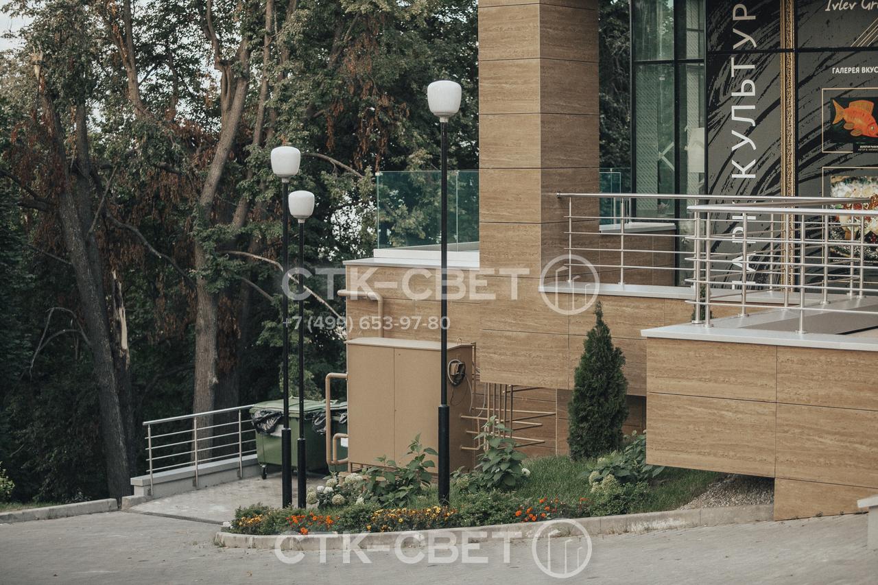 На фото изображены опоры освещения, установленные рядом с общественным зданием. Они имеют лаконичный дизайн и сочетаются с современной инфраструктурой. Черная окраска органично сочетается с другими элементами оформления.